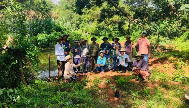 Secretaria de Meio Ambiente do Município de Ibiassucê doa mudas de plantas nativas para revitalização de nascentes.